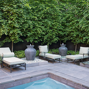 Hot tub Garden Renovation in Chevy Chase Village