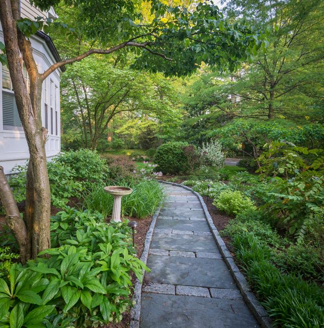 Backyard garden transformation by Everett Garden Designs