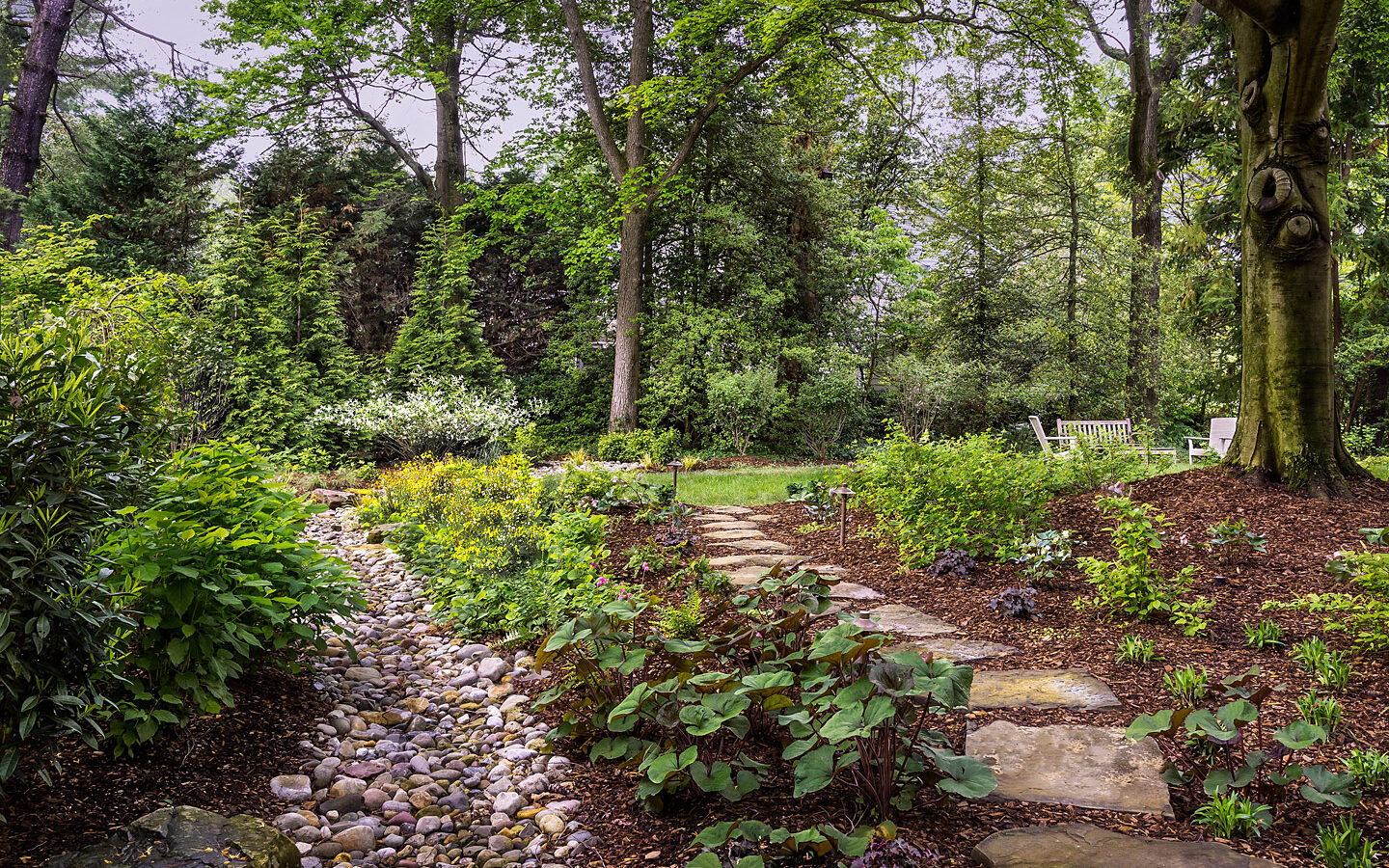 Use of native plants and stream bed