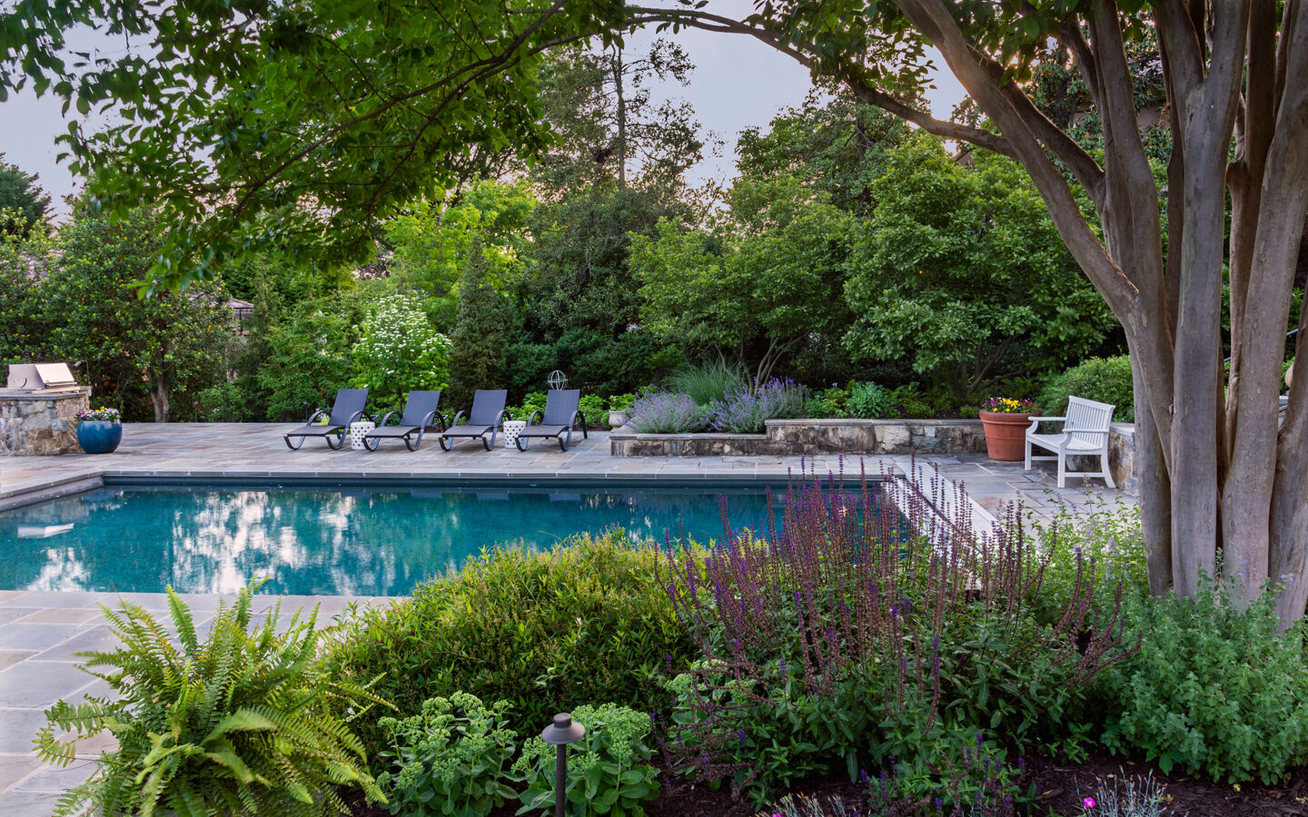 Pool side lush plantings and beds