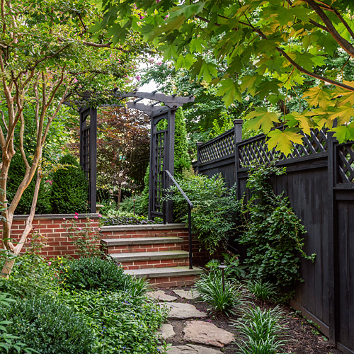 Black Arbor and Fence