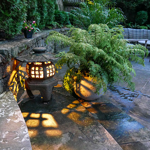 Lantern and potted fern